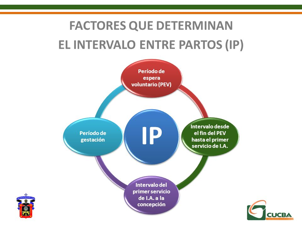 FACTORES QUE DETERMINAN EL INTERVALO ENTRE PARTOS (IP)