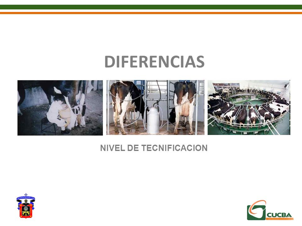 DIFERENCIAS NIVEL DE TECNIFICACION