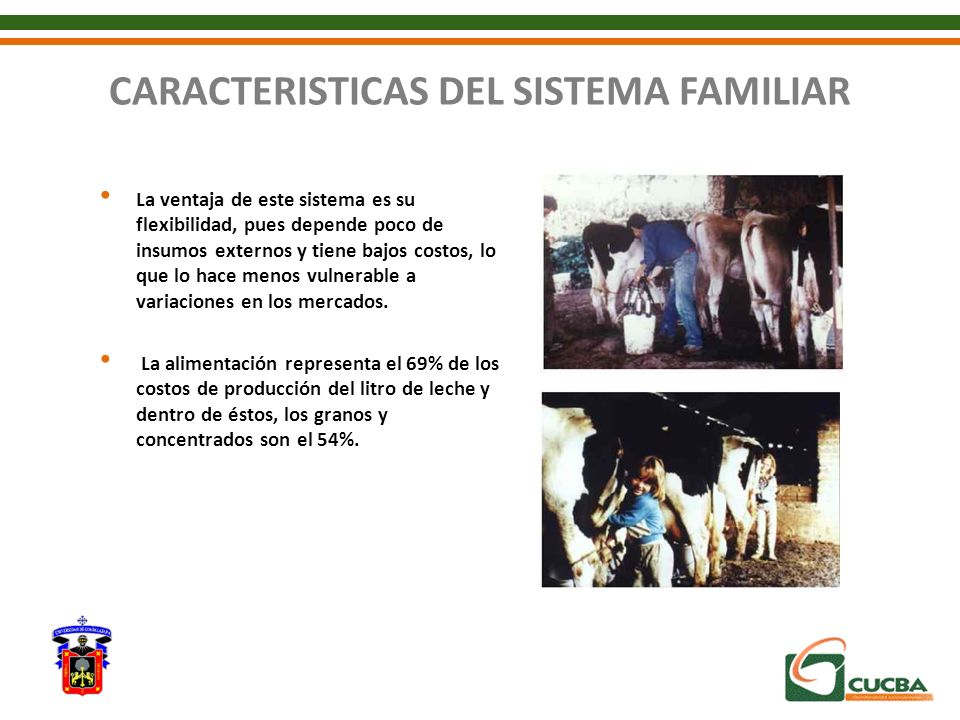 CARACTERISTICAS DEL SISTEMA FAMILIAR