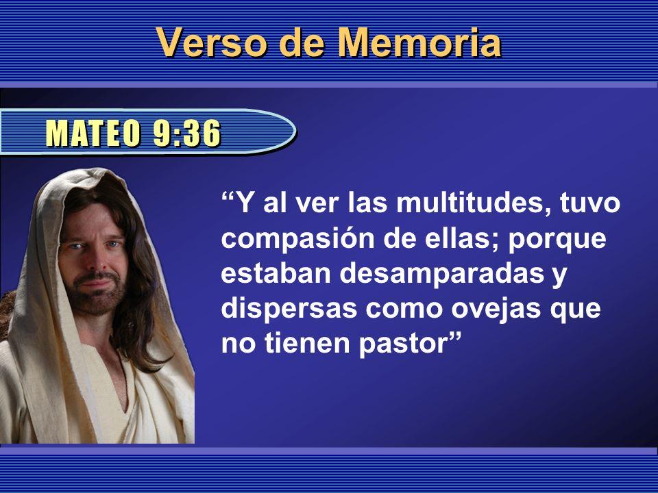 Verso de Memoria MATEO 9:36