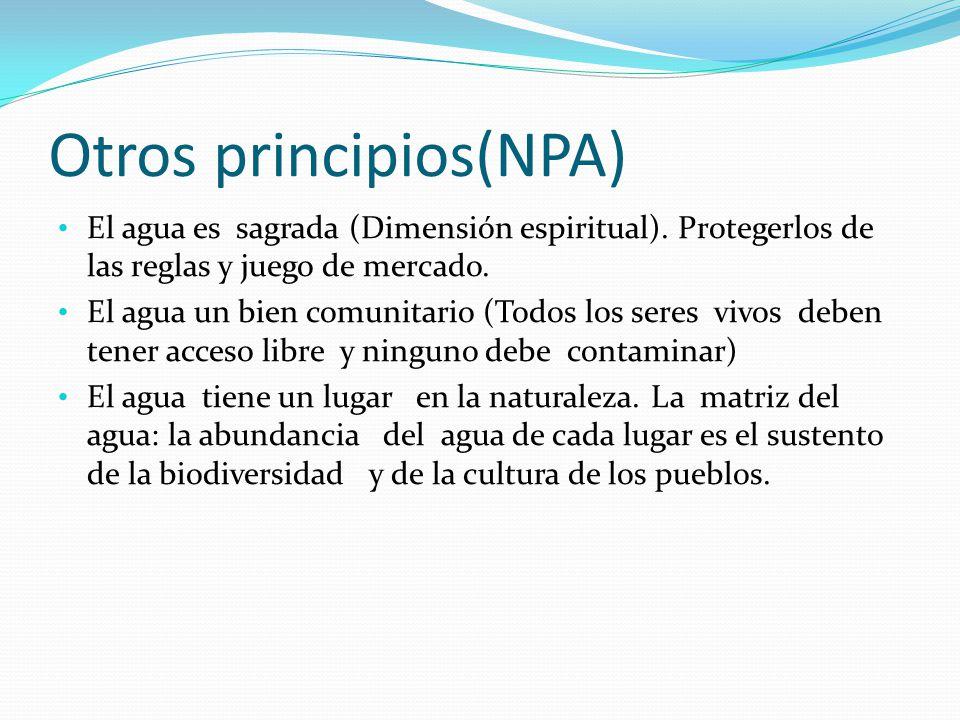 Otros principios(NPA)