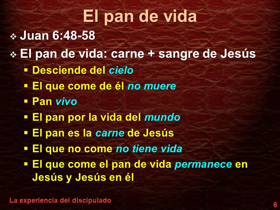 El pan de vida Juan 6:48-58 El pan de vida: carne + sangre de Jesús