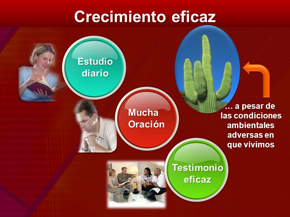 Crecimiento eficaz Estudio diario Mucha Oración Testimonio eficaz