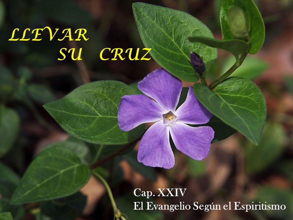 LLEVAR SU CRUZ Cap. XXIV El Evangelio Según el Espiritismo