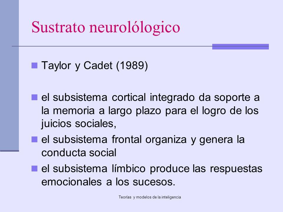 Sustrato neurolólogico