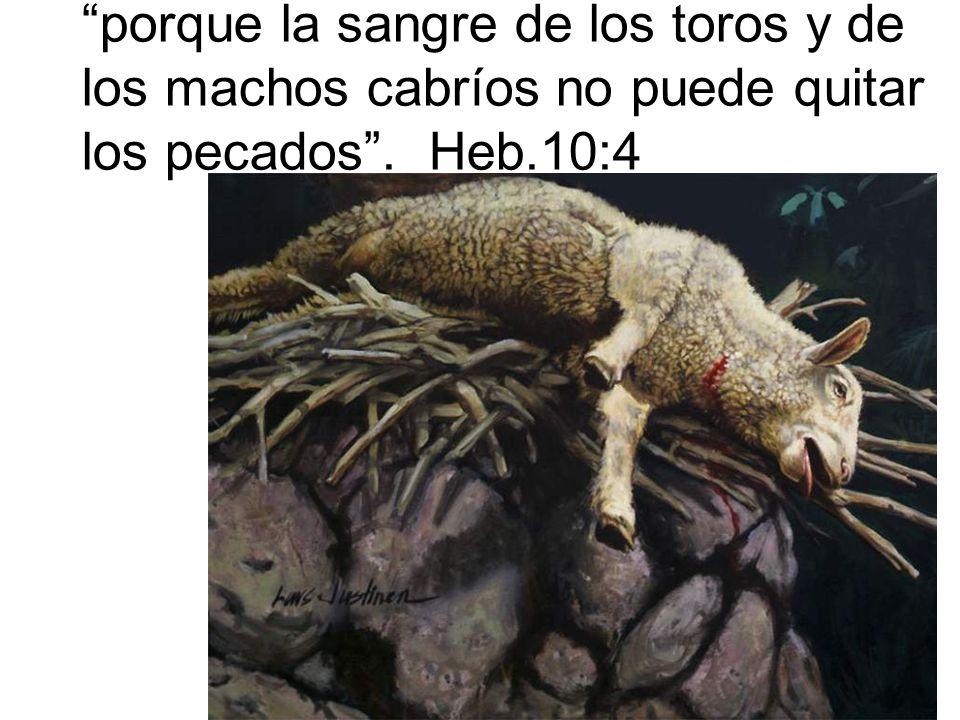 porque la sangre de los toros y de los machos cabríos no puede quitar los pecados . Heb.10:4