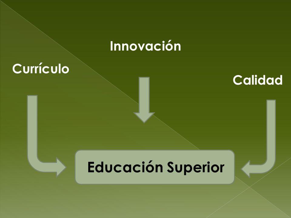 Innovación Currículo Calidad Educación Superior