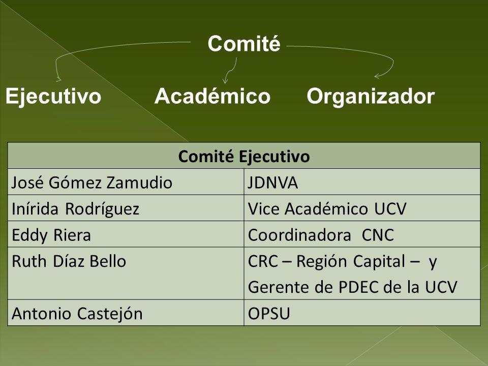 Ejecutivo Académico Organizador