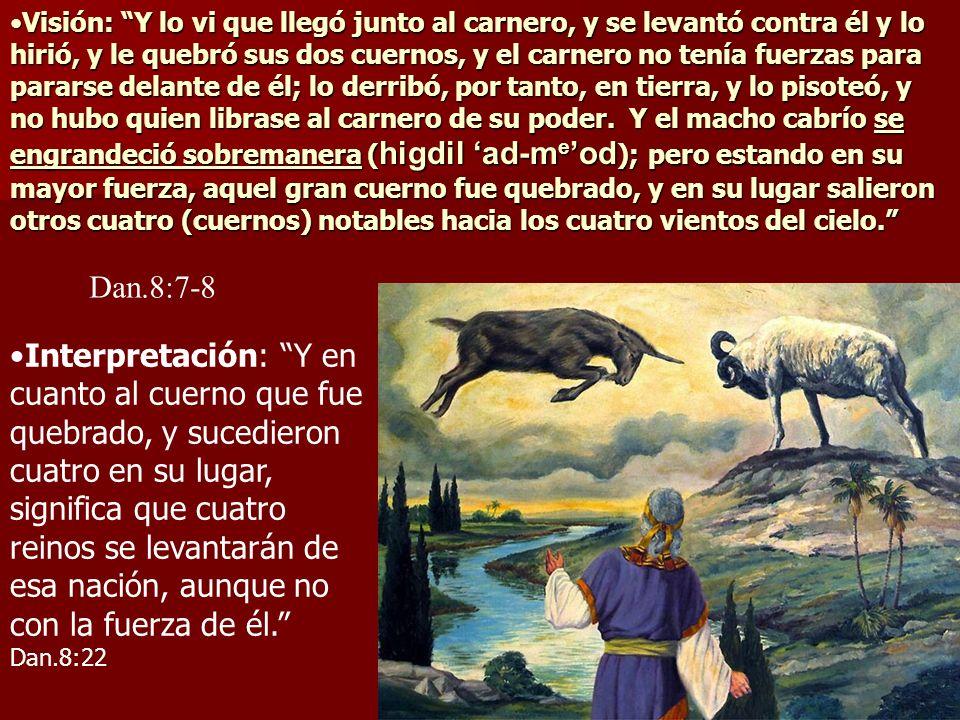 Visión: Y lo vi que llegó junto al carnero, y se levantó contra él y lo hirió, y le quebró sus dos cuernos, y el carnero no tenía fuerzas para pararse delante de él; lo derribó, por tanto, en tierra, y lo pisoteó, y no hubo quien librase al carnero de su poder. Y el macho cabrío se engrandeció sobremanera (higdil 'ad-me'od); pero estando en su mayor fuerza, aquel gran cuerno fue quebrado, y en su lugar salieron otros cuatro (cuernos) notables hacia los cuatro vientos del cielo.