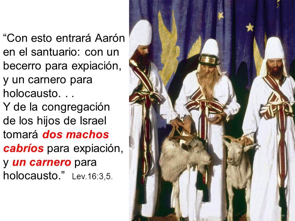 Con esto entrará Aarón en el santuario: con un becerro para expiación, y un carnero para holocausto. . .