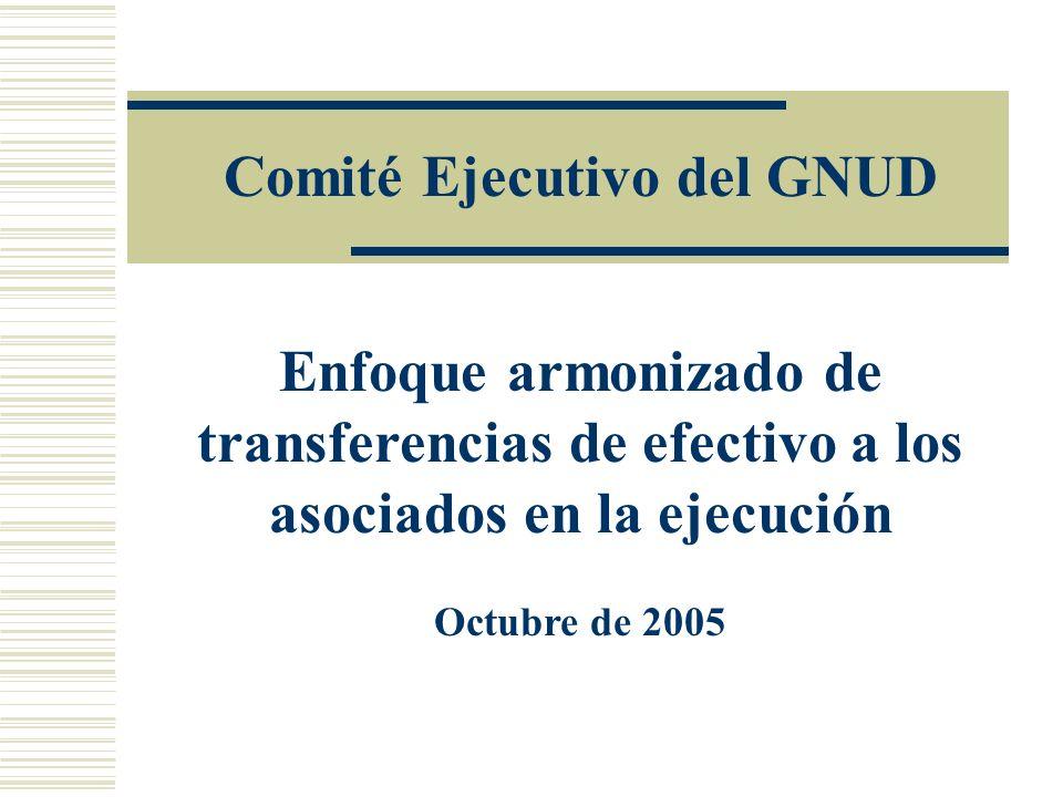 Comité Ejecutivo del GNUD