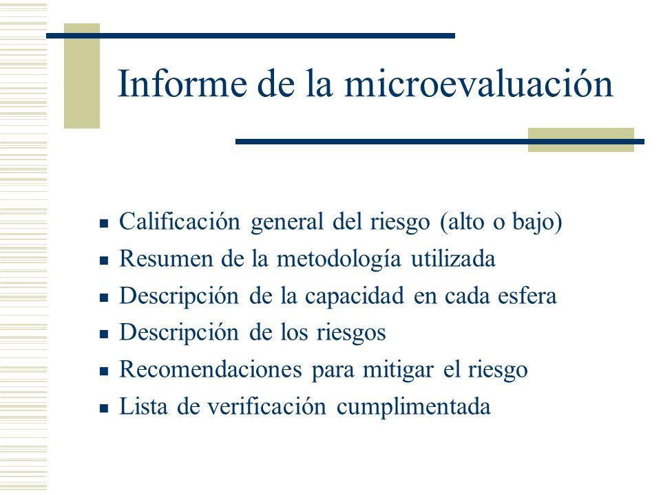 Informe de la microevaluación
