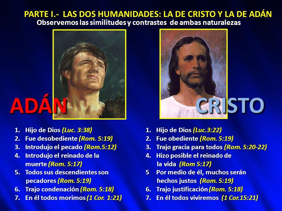 ADÁN CRISTO PARTE I.- LAS DOS HUMANIDADES: LA DE CRISTO Y LA DE ADÁN