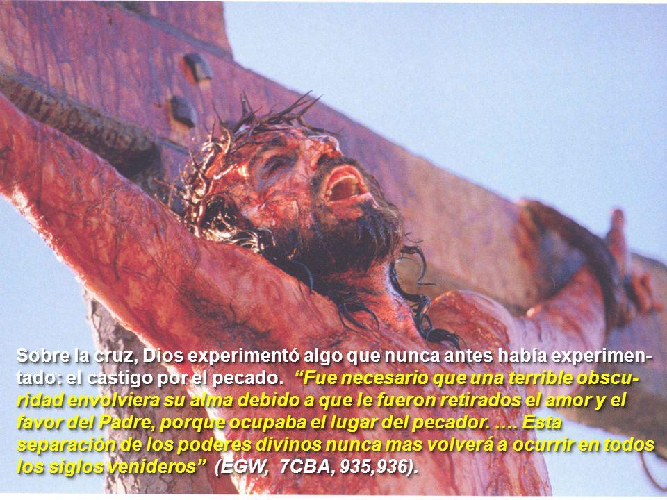 Sobre la cruz, Dios experimentó algo que nunca antes había experimen-tado: el castigo por el pecado.