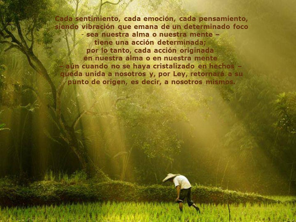 Cada sentimiento, cada emoción, cada pensamiento,