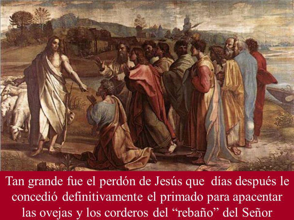 Tan grande fue el perdón de Jesús que días después le concedió definitivamente el primado para apacentar las ovejas y los corderos del rebaño del Señor