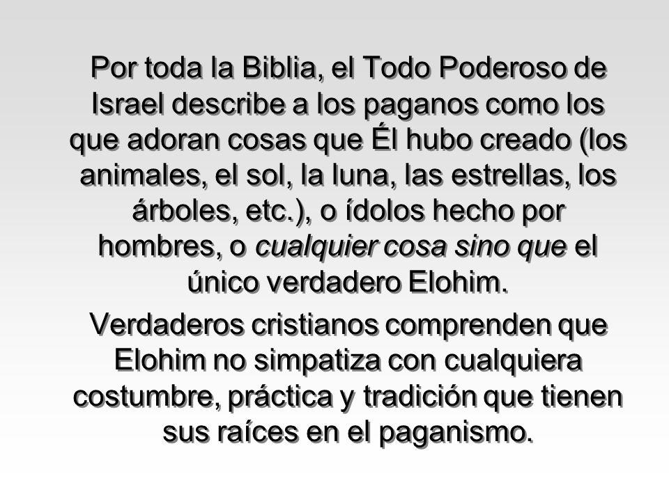 Por toda la Biblia, el Todo Poderoso de Israel describe a los paganos como los que adoran cosas que Él hubo creado (los animales, el sol, la luna, las estrellas, los árboles, etc.), o ídolos hecho por hombres, o cualquier cosa sino que el único verdadero Elohim.