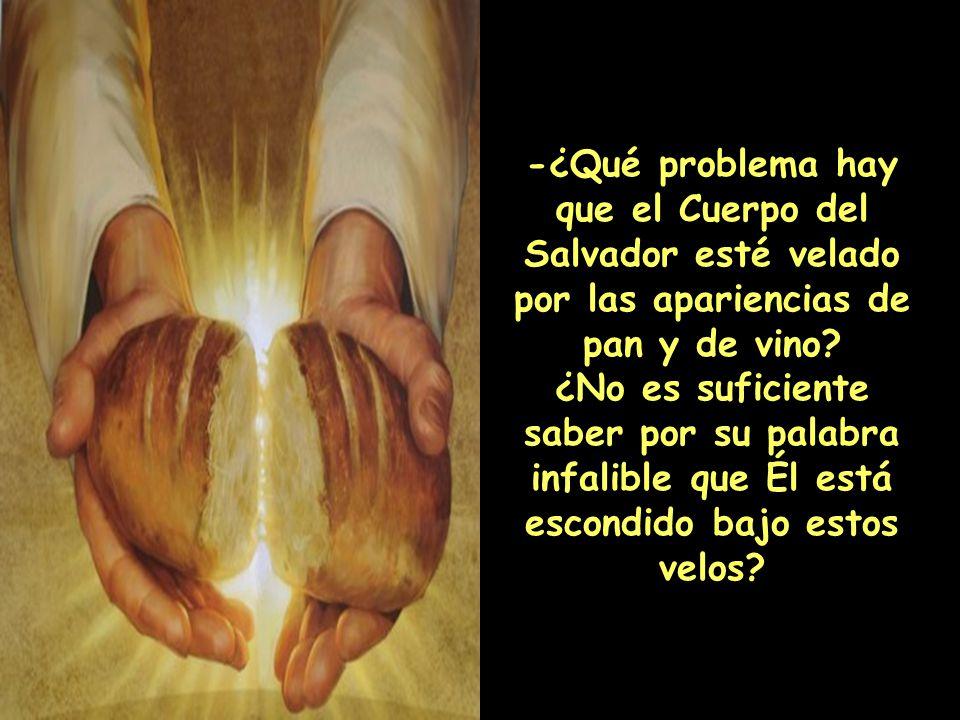 -¿Qué problema hay que el Cuerpo del Salvador esté velado por las apariencias de pan y de vino