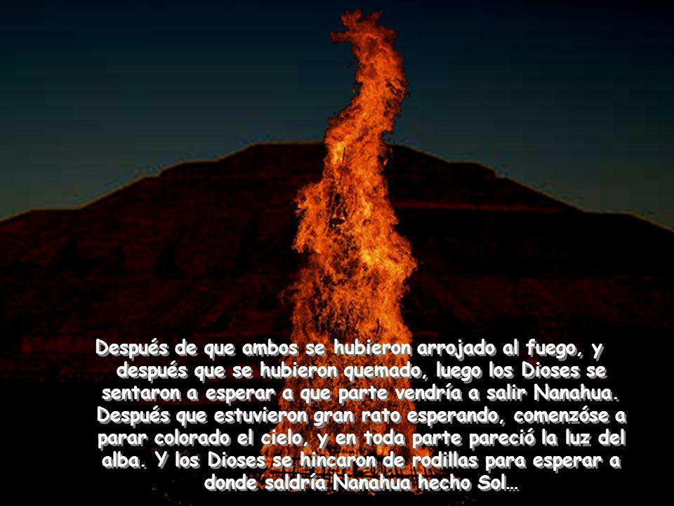 Después de que ambos se hubieron arrojado al fuego, y después que se hubieron quemado, luego los Dioses se sentaron a esperar a que parte vendría a salir Nanahua.