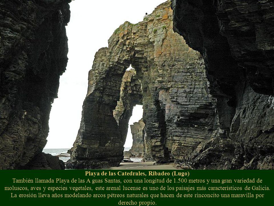 Playa de las Catedrales, Ribadeo (Lugo) También llamada Playa de las A guas Santas, con una longitud de 1.500 metros y una gran variedad de moluscos, aves y especies vegetales, este arenal lucense es uno de los paisajes más característicos de Galicia.