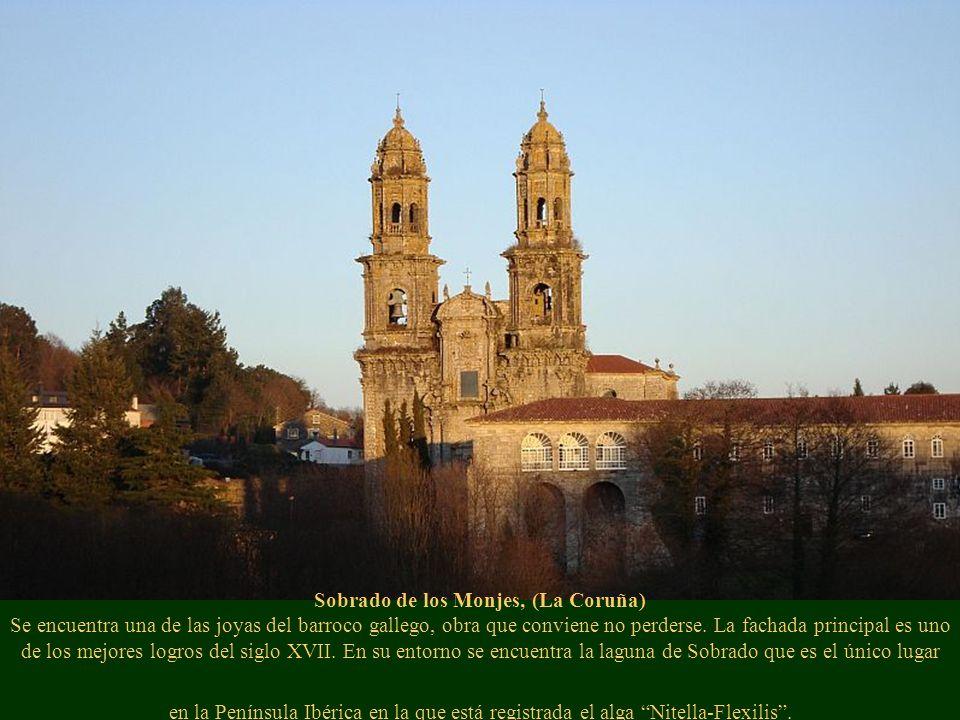 Sobrado de los Monjes, (La Coruña) Se encuentra una de las joyas del barroco gallego, obra que conviene no perderse. La fachada principal es uno de los mejores logros del siglo XVII. En su entorno se encuentra la laguna de Sobrado que es el único lugar