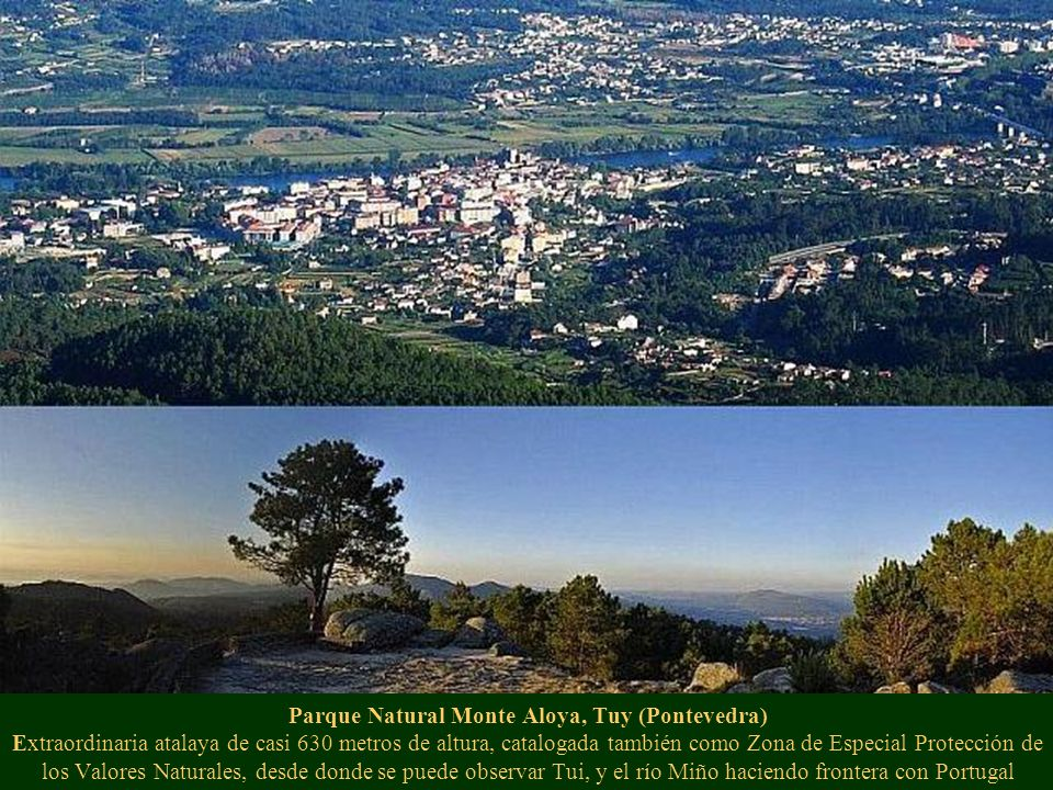 Parque Natural Monte Aloya, Tuy (Pontevedra) Extraordinaria atalaya de casi 630 metros de altura, catalogada también como Zona de Especial Protección de los Valores Naturales, desde donde se puede observar Tui, y el río Miño haciendo frontera con Portugal