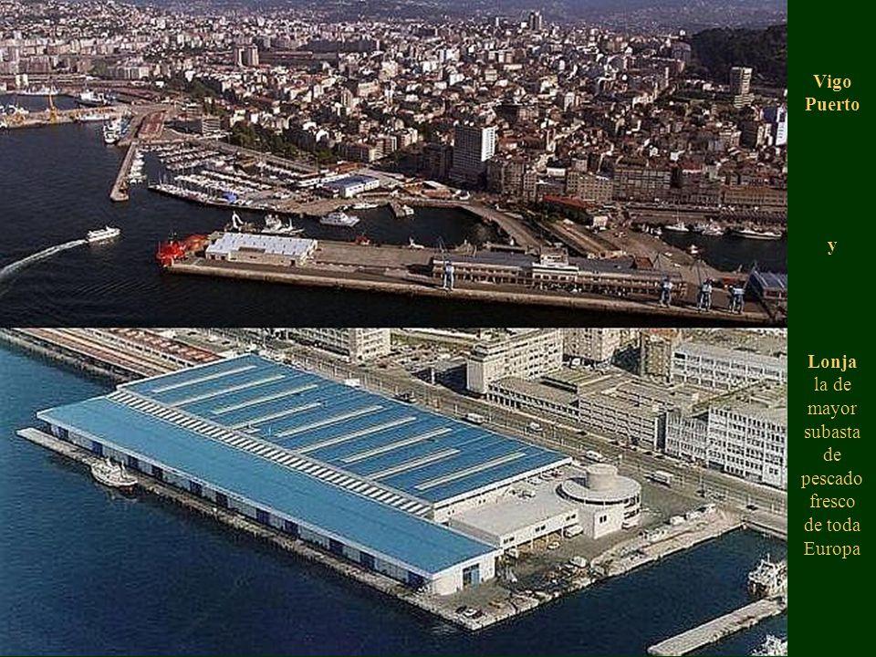 Vigo Puerto y Lonja la de mayor subasta de pescado fresco de toda Europa