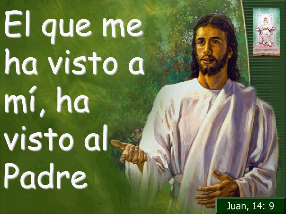 El que me ha visto a mí, ha visto al Padre