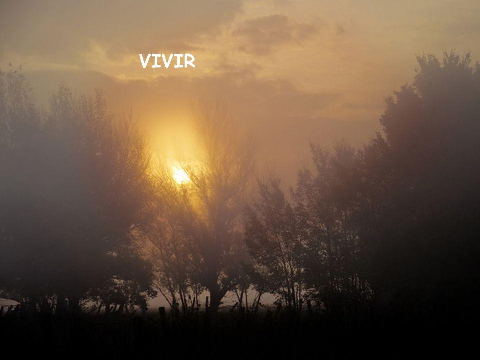 VIVIR VIVIR