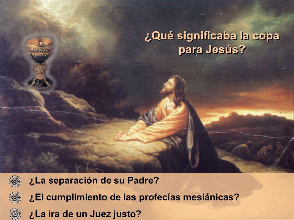¿Qué significaba la copa para Jesús
