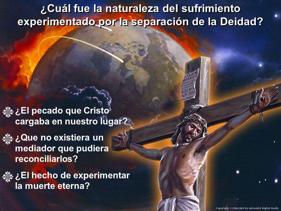 ¿Cuál fue la naturaleza del sufrimiento experimentado por la separación de la Deidad