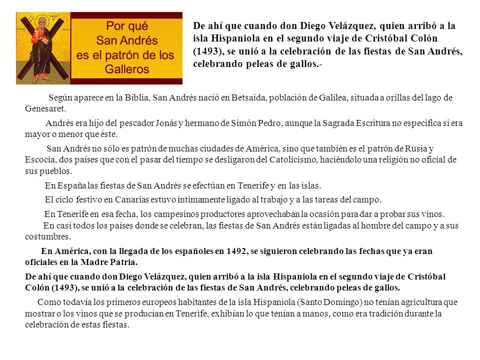 De ahí que cuando don Diego Velázquez, quien arribó a la isla Hispaniola en el segundo viaje de Cristóbal Colón (1493), se unió a la celebración de las fiestas de San Andrés, celebrando peleas de gallos.-