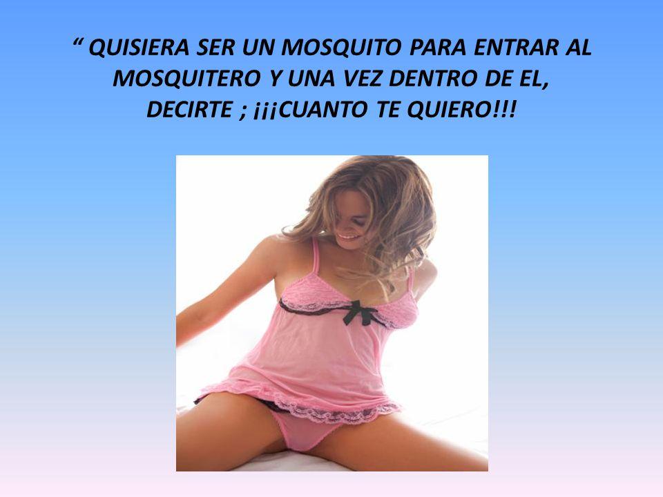 QUISIERA SER UN MOSQUITO PARA ENTRAR AL MOSQUITERO Y UNA VEZ DENTRO DE EL, DECIRTE ; ¡¡¡CUANTO TE QUIERO!!!