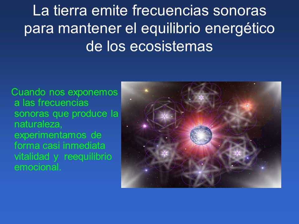 La tierra emite frecuencias sonoras para mantener el equilibrio energético de los ecosistemas