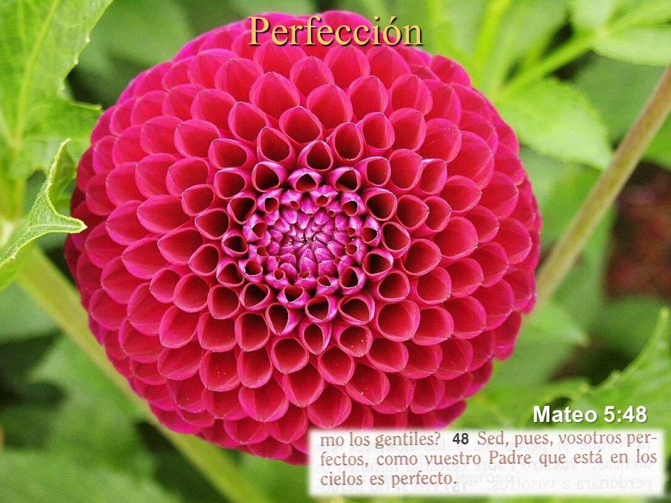 Perfección Mateo 5:48