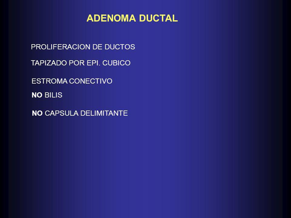 ADENOMA DUCTAL PROLIFERACION DE DUCTOS TAPIZADO POR EPI. CUBICO