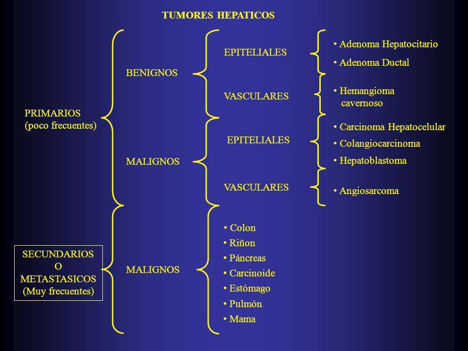 TUMORES HEPATICOS PRIMARIOS. (poco frecuentes) SECUNDARIOS. O. METASTASICOS. (Muy frecuentes) BENIGNOS.