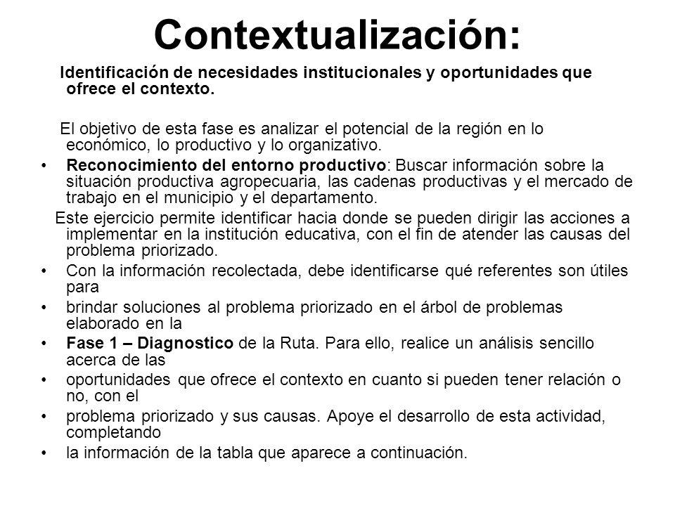 Contextualización:Identificación de necesidades institucionales y oportunidades que ofrece el contexto.