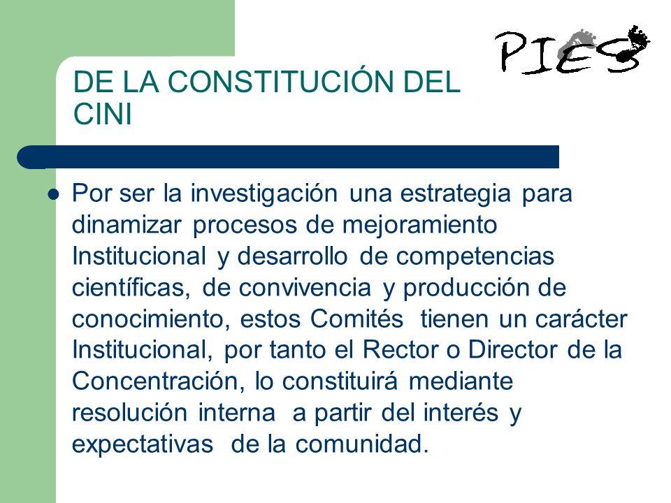 DE LA CONSTITUCIÓN DEL CINI