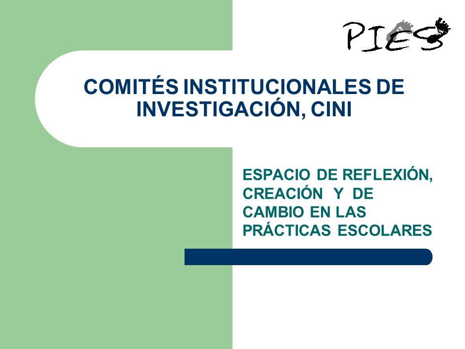 COMITÉS INSTITUCIONALES DE INVESTIGACIÓN, CINI