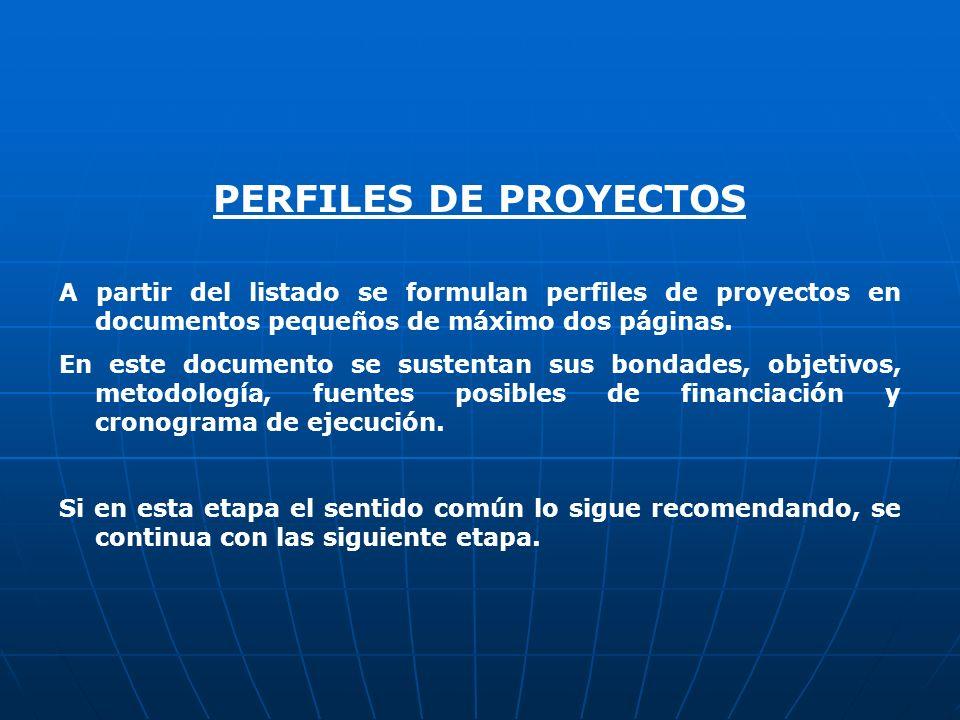 PERFILES DE PROYECTOSA partir del listado se formulan perfiles de proyectos en documentos pequeños de máximo dos páginas.
