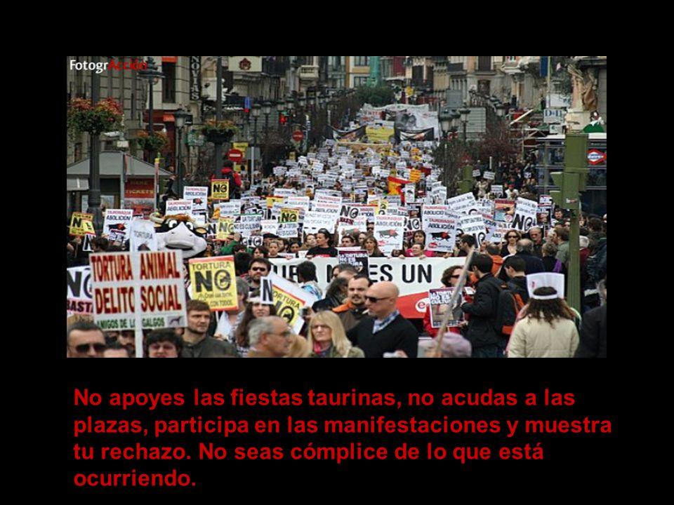 No apoyes las fiestas taurinas, no acudas a las plazas, participa en las manifestaciones y muestra tu rechazo.