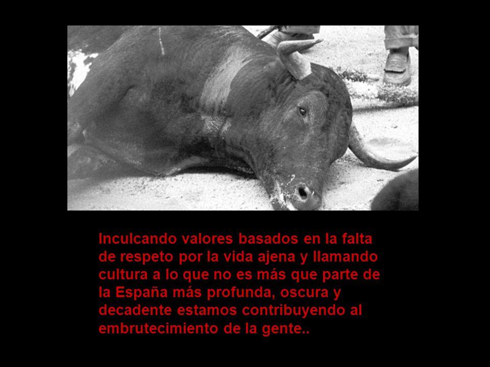 Inculcando valores basados en la falta de respeto por la vida ajena y llamando cultura a lo que no es más que parte de la España más profunda, oscura y decadente estamos contribuyendo al embrutecimiento de la gente..