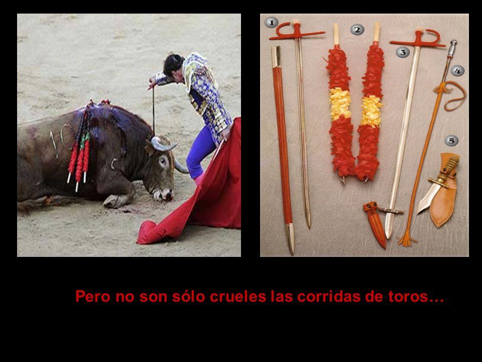 Pero no son sólo crueles las corridas de toros…