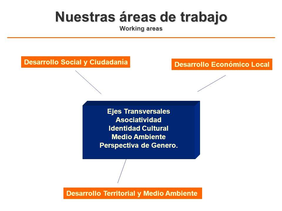 Nuestras áreas de trabajo Working areas