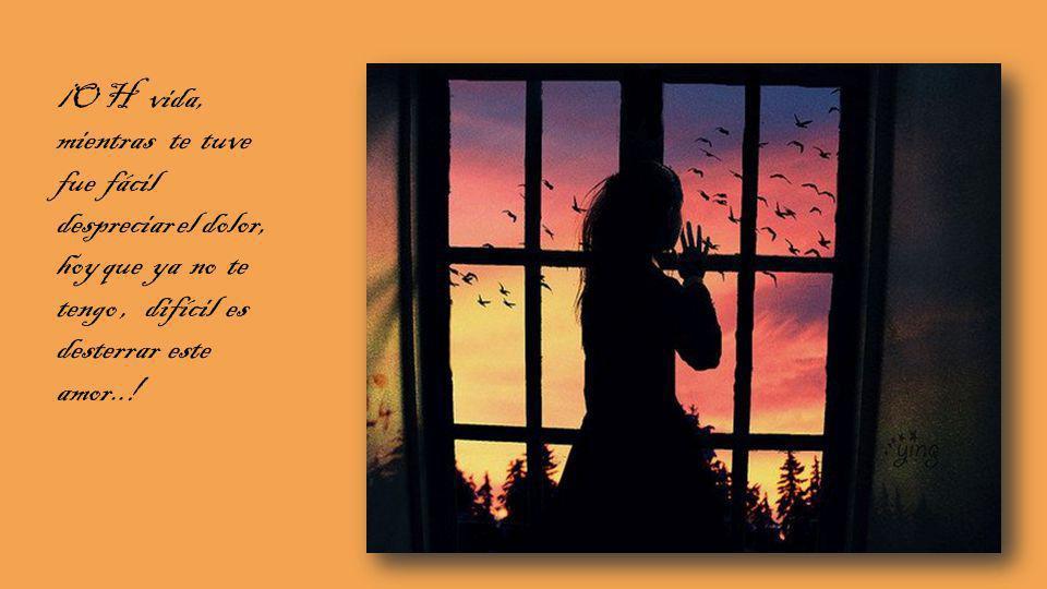 ¡O H vida, mientras te tuve fue fácil despreciar el dolor, hoy que ya no te