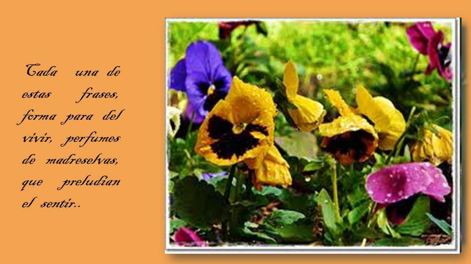 Cada una de estas frases, forma para del vivir, perfumes de madreselvas, que preludian el sentir..