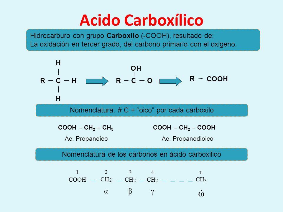 Acido Carboxílico ώ 1 COOH 2 CH2 3 4 n CH3 α β γ
