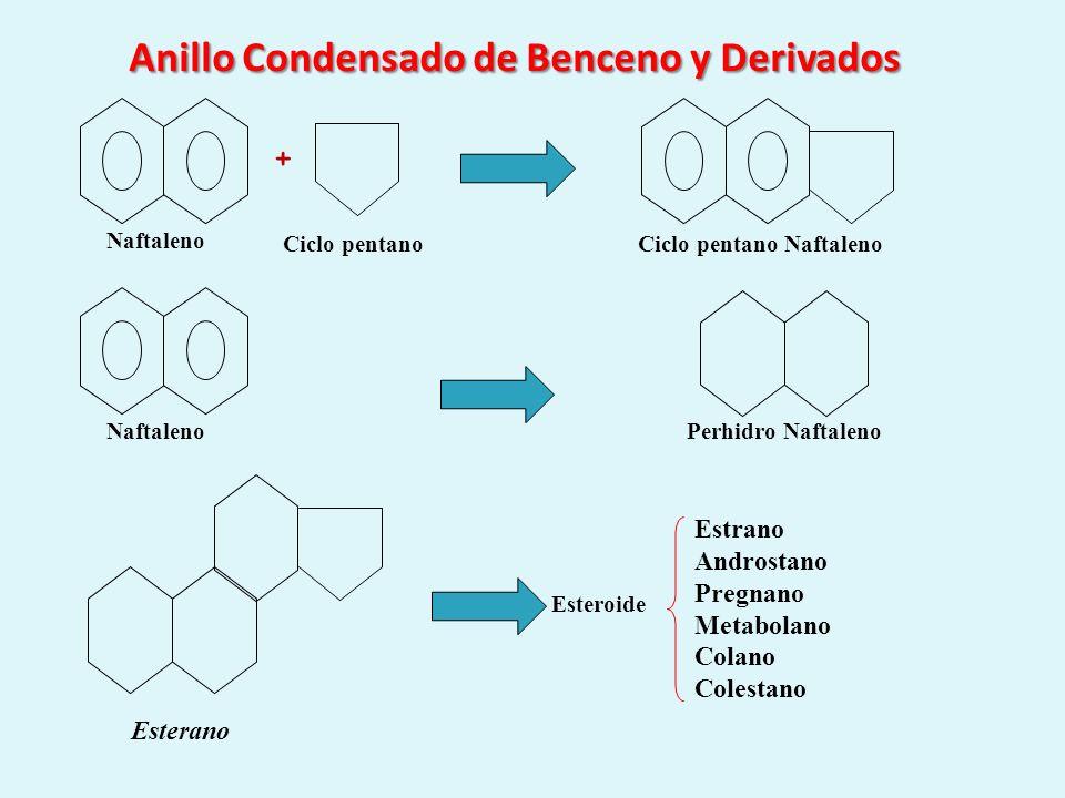 Anillo Condensado de Benceno y Derivados