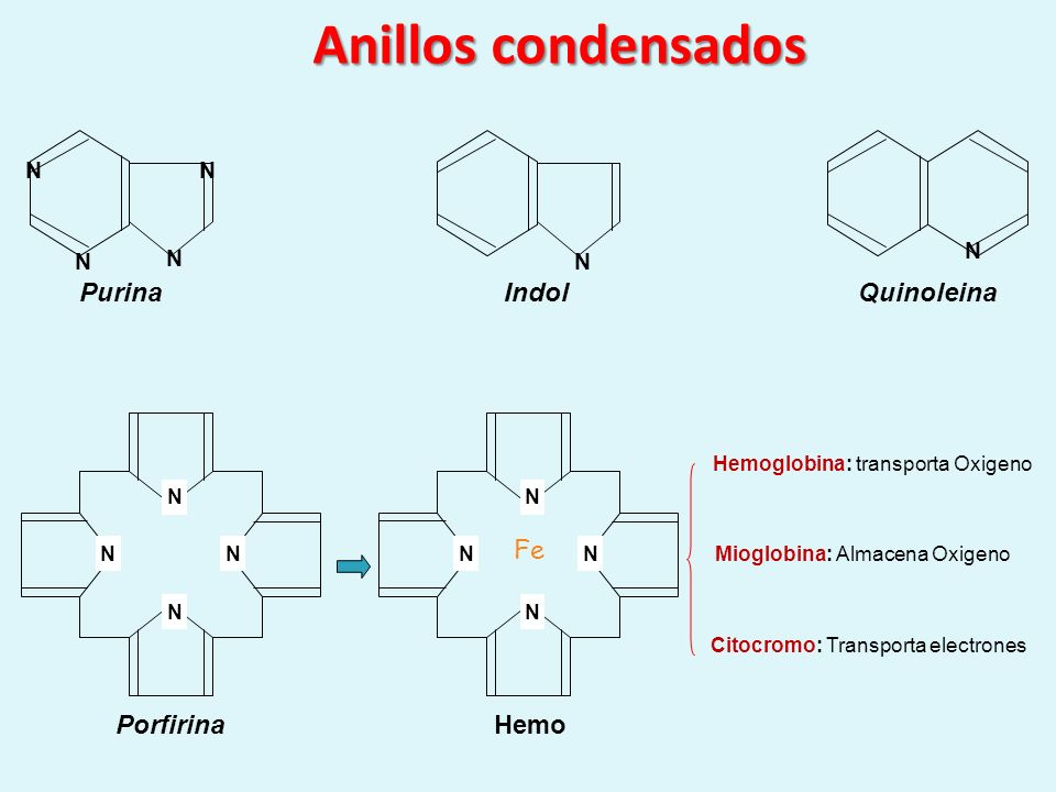 Anillos condensados Purina Indol Quinoleina Fe Porfirina Hemo N N N N
